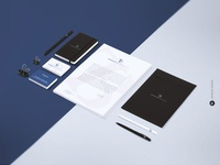 Branding Identity Thomas Bise Immobilier Final