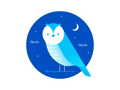 Owl stars owl night perch sky moon icon bird