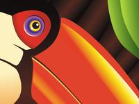 Tucano – Tropicalia Series