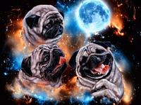 t-shirt design, space pugs
