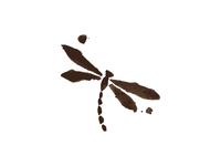 Dragonfly coffee shop