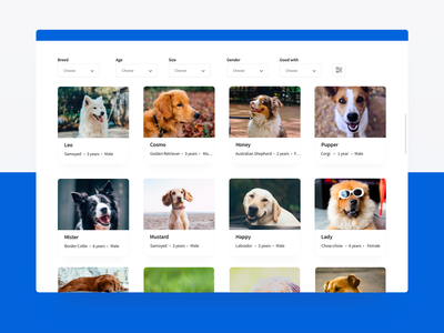 Dogs Adoption platform shelter animal website adoption dog