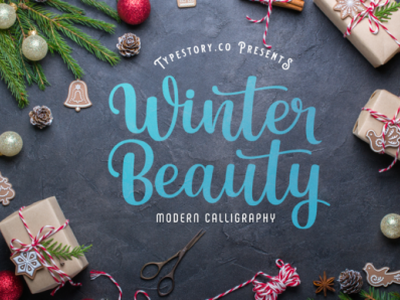 Winter Beauty Fonts web app bold animation logo branding typography newfont design handmade font