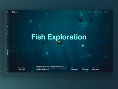 Fish Exploration