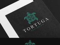 Tortuga Real Estate
