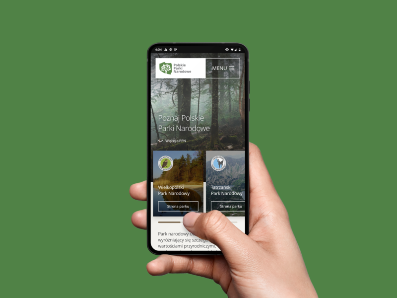 Polish National Parks - new website concept green park parks forest photography photo web website web design