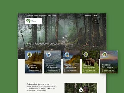 Polish National Parks - new website concept national parks park forest grid layout clean website web web design