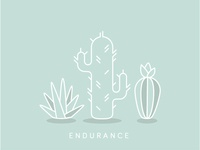 Lessons from Cacti: Endurance