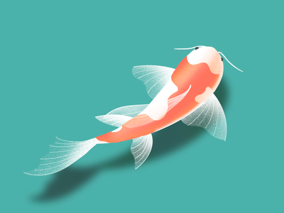 Koi Fish Illustration animal uidesign ux design water koi fish fish illustrator illustration uxui dailyui