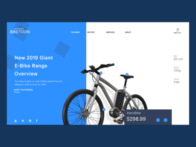 Webpage for the Bike
