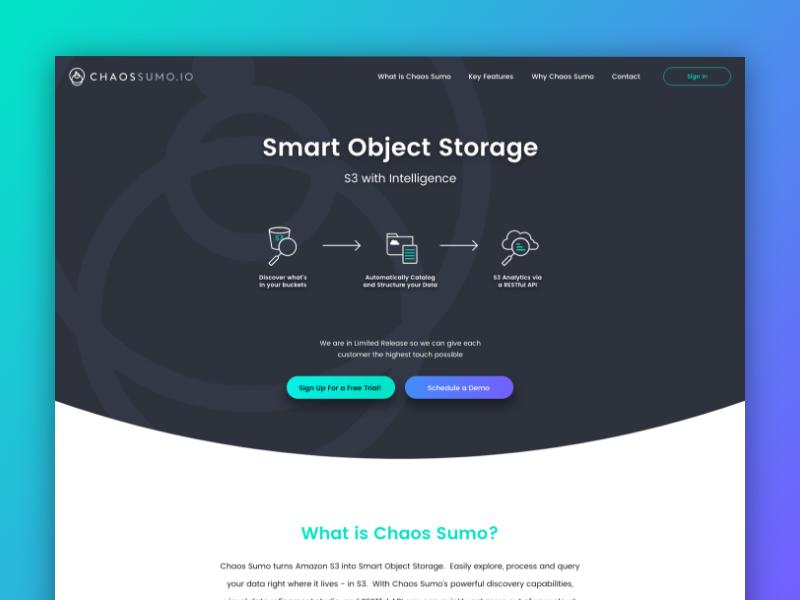 Chaossumo website homepage small