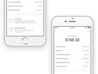 Blispay iOS - Balance Summary
