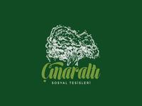 Çınaraltı / Logo Design