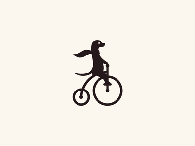 Meerkat on a Bicycle
