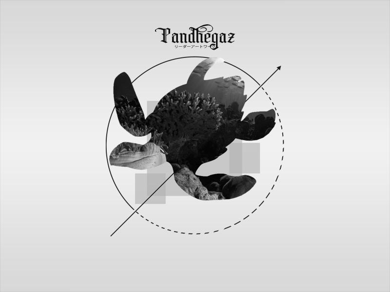 Fly travel nature turtle pandhegaz art vector illustration design