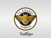 FC Pegasus Sambas