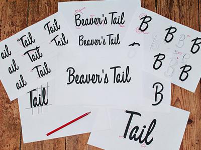 Beaver's Tail Logo typography logo custom lettering branding sketch