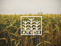 Kavesh Logo Concept