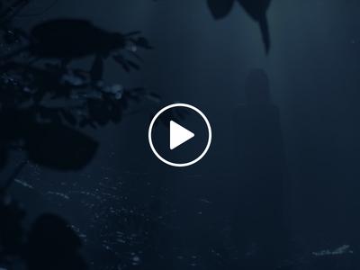 Acqua di Gioia Microsite Video