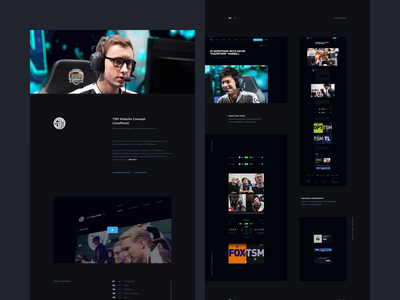 TSM Website Concept - Case Study