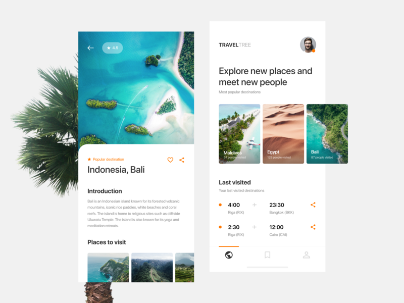 TravelTree — Travel App web ux ui illustration interface flat design clean ios mobile branding art travel app