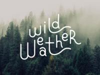 Wild Weather Logo Exploration