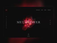 ▲ Metaflower ▲