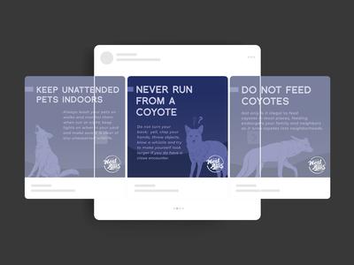 Urban Coyotes Social Mockup