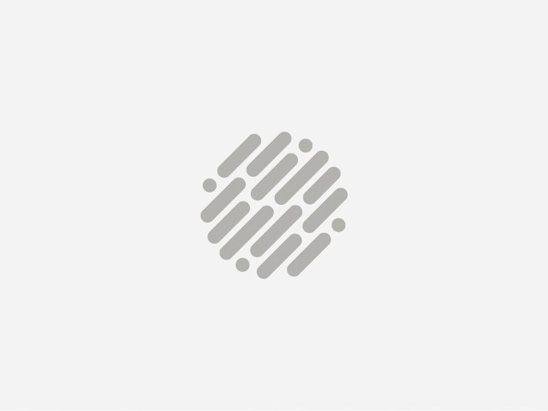 Globe Mark logo brand identity mark globe data info defense