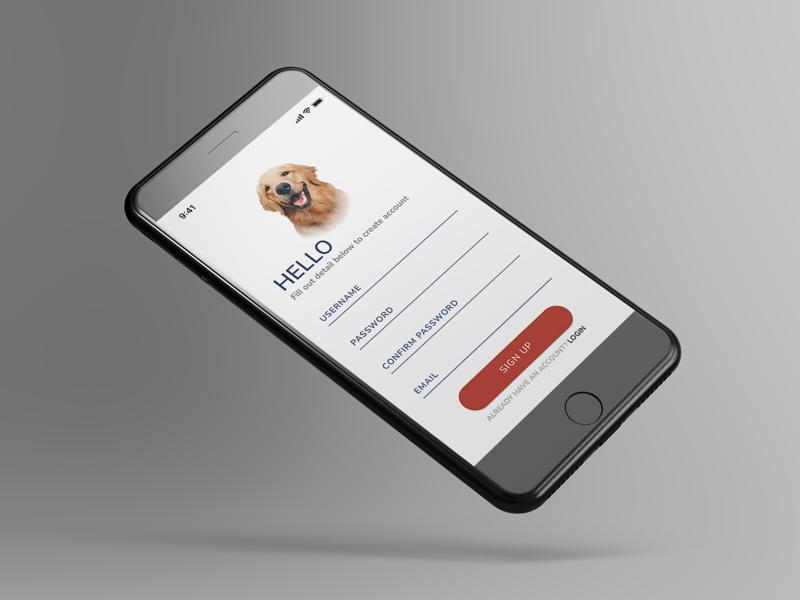 iPhone 8 Form app minimal sketch ui ux design