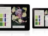 Parfaire, iPad Magazine