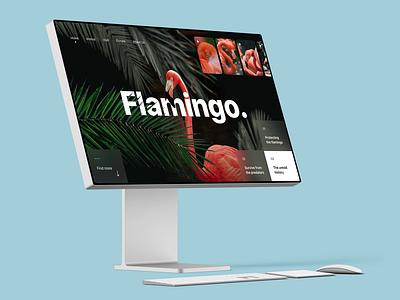 Flamingo Website design userinterface userexperience uitrends uxdesign uidesign uiux ux ui graphic design dribbble designinspiration designer desainer dailyui branding behance appdesign figma adobexd