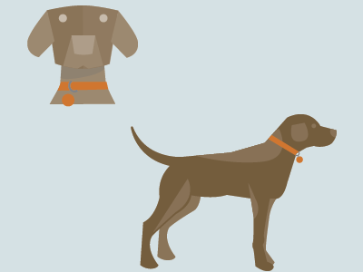 Pet Illustrations-Style development illustration infographic vector dog