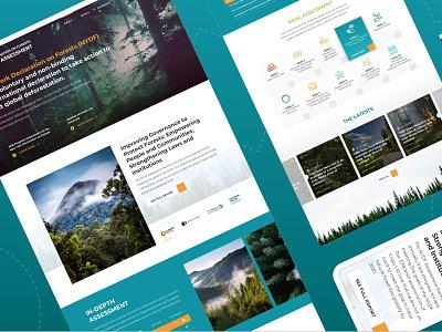 New York Declaration on Forests - Climate Focus mockup desktop visual design forest ux ui website dublin design