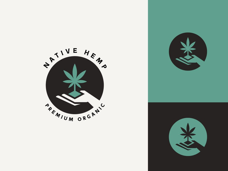 Native Hemp hemp hemp oil logo design logo logo designer cannabis branding cannabis grow weed organic cannabis medical cannabis nature medicine natural hand holds cannabis cannabis plant marijuana cannabis farm hemp logo cannabis logo cannabis