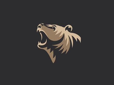 Bear predator grizzly bear illustration logo designer designer logo best designer identuty bear brand best anima vector bear bear logo