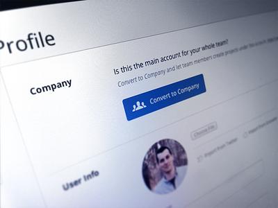 Convert to Company invision company team button blue profile users avatar account settings