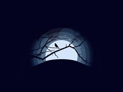 Night bird dark brightness night adobe ilustrator graphic design illustration