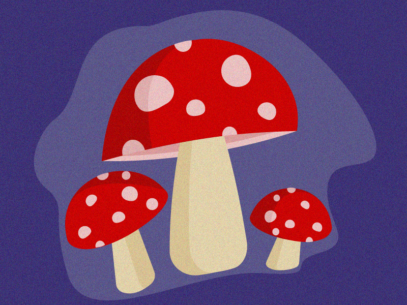 Mushrooms adobe photoshop mushrooms adobe ilustrator graphic design illustration