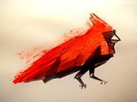 Cardinal, Ink
