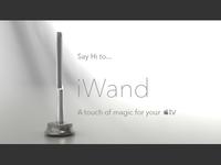 iWand V101