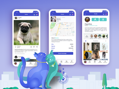 Petaholics Social Network ux mexico rediseño user interface pets social network ios redesign ui design ui ux colors app