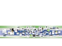 Bi History Wall Electronic Monitoring