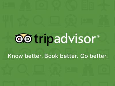 Icons tripadvisor