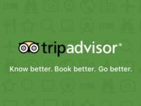 TripAdvisor Icons