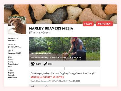 Dog User Profile – Daily UI 006 marley feed user account userprofile treat dog dailyuichallenge dailyui006 dailyui