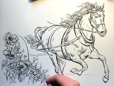 Horse and Poppies poppies poppy flowers process book jane austen horse drawing ink illustration