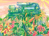 The Age of Vegetarian Machines: Biofuels