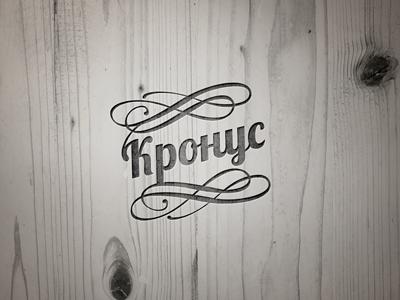 Kpohyc logo typography calligraphic custom lettering