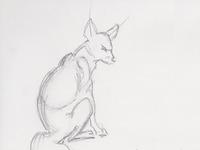 Fox Sketch for Book
